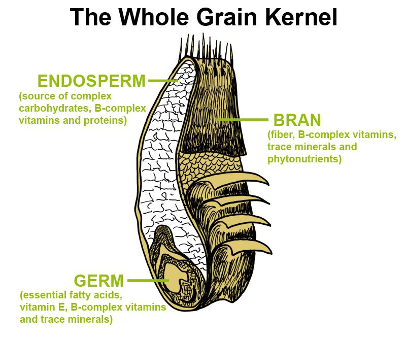 Multigrain vs. whole grain: Which is healthier? - MayoClinic.com