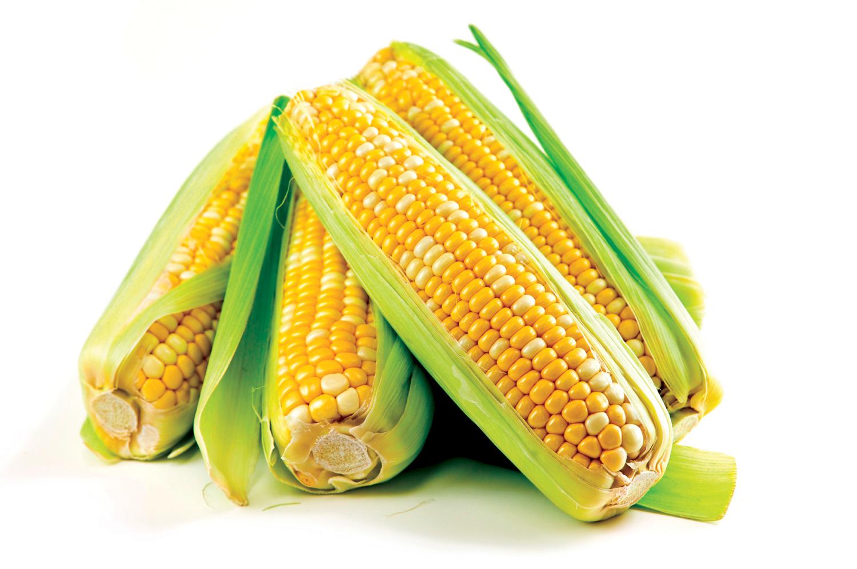 Sweet corn myths | WBAA